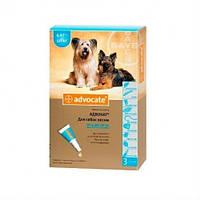Капли Advocate собакам от 4 до 10 кг - 1 пип