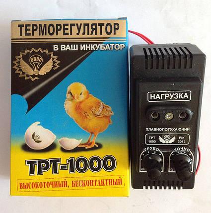 Терморегулятор для инкубатора электронный ТРТ 1000, фото 2