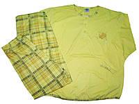 Пижама женская  с начесом, размер M.L.XL.2XL.3XL, арт. 654