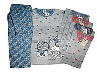 Пижама женская трикотажная, размеры S, M, L, XL, XXL, арт. 533