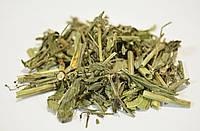 Ясменник душистый трава (пахучий) 100 грамм