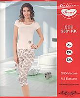 Пижама Cocoon secret батал пудрового цвета