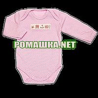 Детский боди с длинным рукавом р. 62 демисезонный ткань ИНТЕРЛОК 100% хлопок ТМ Baby A 3502 Розовый