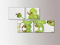 """Модульная картина на холсте """"Орхидея"""""""