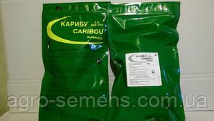 Гербицид Карибу по сахарной и кормовой свекле