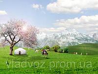 Весна, праздники, пикники - отдохни комфортно!!!