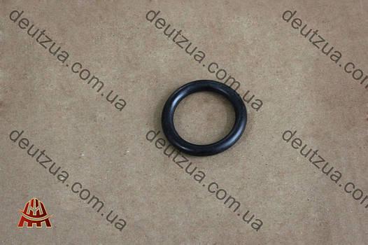 Кольцо уплотнительное Deutz (Дойц) 1013, 1012 (01180025)