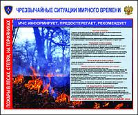 Стенды для лесничеств Пожары в лесах