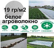 Агроволокно біле 19 г/м2