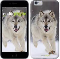 "Чехол на iPhone 6 Бегущий волк ""826c-45"""