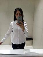 Классическая женская белая рубашка у-2613283