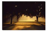 Светящиеся картины Startonight Утро в Парке Природа Пейзаж Печать на Холсте Декор стен Дизайн дома Интерьер