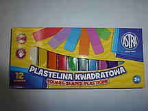 Пластилин 12 цветов ASTRA квадратный