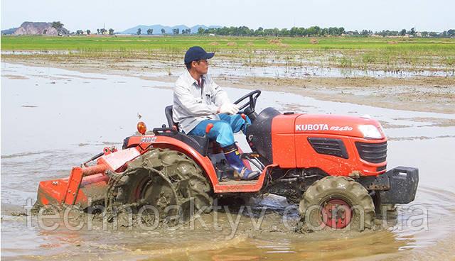 Затопляемое рисовое поле