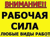 Услуги Разнорабочих Киев