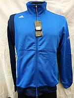Спортивный костюм мужской из эластика Adidas сине-голубой