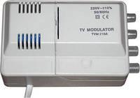 Модулятор BiZone TVM210