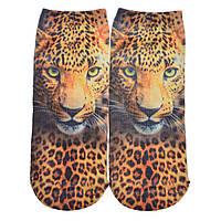 Носки с 3Д 3D рисунком Леопард Носочки Женские Детские Шкарпетки 35 36 37 38 размер