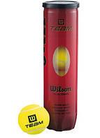 Теннисные мячи Wilson Team 4 шт.