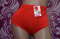 Красное женское нижнее белье,трусы,батальная серия