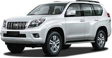 Защита двигателя на Toyota Land Cruiser Prado 150 (с 2009---)