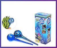 Автополив для растений Aqua Globes (Аква Глоубс) - 2 шт.
