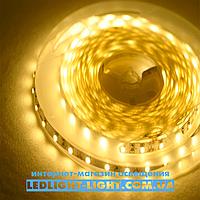 """Светодиодная лента """"LC""""  12 V 60 диодов/метр 4.8W теплый, без силикона, фото 1"""