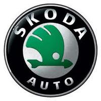 Защиты картера Skoda