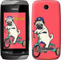 "Чехол на Nokia Asha 305 / 306 Мопс на велосипеде ""3072u-248"""