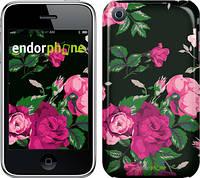 """Чехол на iPhone 3Gs Розы на черном фоне """"2239c-34"""""""