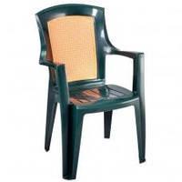 Кресло пластиковое Viola wood
