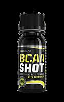 BioTech BCAA Shot 60 мл