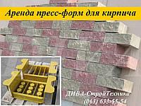 Аренда пресс форм, матрицы для облицовочного кирпича напрокат, фото 1