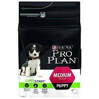 Pro Plan Medium Puppy Sensitive для щенков средних пород склонных к аллергии (лосось)