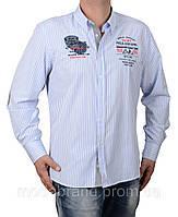 Рубашка мужская в полоску Paul Shark-1432 голубая