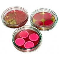 Исследование бактериологическое крови на стерильность с использованием двуфазнои системы HiCombi