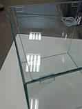 Террариум с крышкой на 8л, фото 2