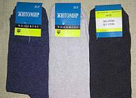 Носки шкарпетки мужские стрейч демисезонные 25р, 27р, 29р, 31р  Житомир, фото 1