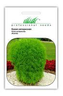 """Купить семена цветов Кохия Кипарисовая 1 г  ТМ """"Нем Zaden """"(Голландия)"""