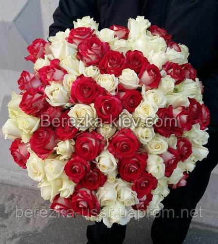 Букет из белых-красных роз 101 шт. высота 50-60см. - Интернет магазин БЕРЕЗКА в Киеве