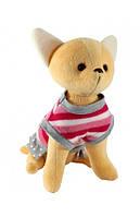 Щенок чихуахуа Розочка Sunny Bunny 290003