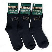 Носки мальчиковые  Житомир 101Mdrn украинские носки от производителя (в упаковке 12 ед.)