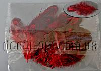 Перья фазана красные 4-8см/50 шт