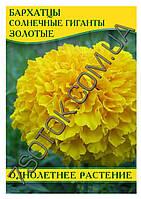 Семена бархатцев Солнечные гиганты Золотые, 50г, фото 1