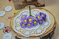 Цветы Ромашки (цена за букет из 10 шт). Цвет - фиолетовый