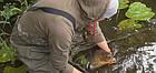 Зарыбление водоема. Разведение декоративной рыбы, фото 8