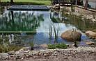 Эко-бассейны, биопруды, экопруды, фото 3
