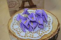 Цветы Каллы (цена за букет из 12 шт). Цвет - фиолетовый, серединка - желтая