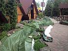 Декоративные ручьи, садовые фонтаны, фото 5