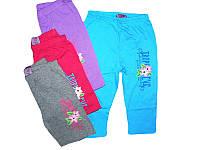 Бриджи трикотажные для девочек, Active Sports, размеры 98-128, арт. HZ-5456